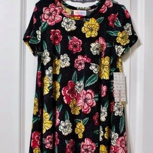 Lularoe Scarlett Dress